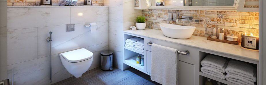Toto Neorest Washlet SE/LE Test